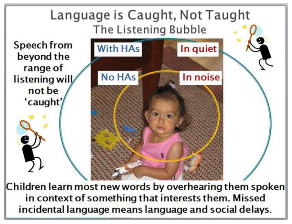 Language is Caught Not Taught