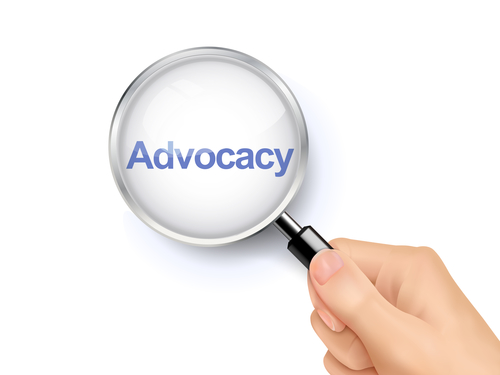 Advocacy Notes: The Right to an Appropriate Program of Special Education Support